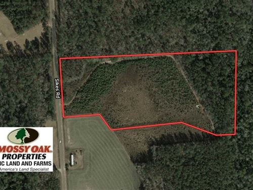 Under Contract, 13.79 Acres : Whiteville : Columbus County : North Carolina