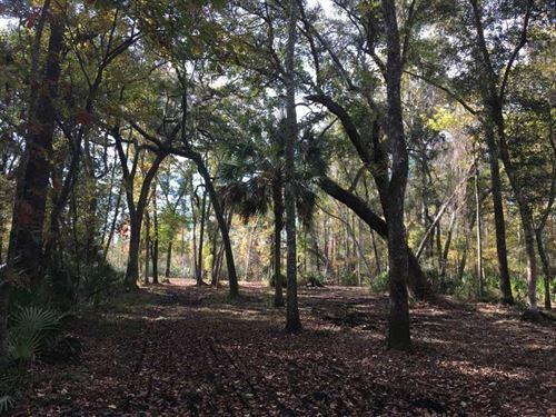 28.95 Ac Land For Sale Camden Coun : Kingsland : Camden County : Georgia