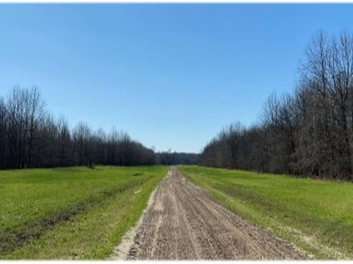 One Equity Share Of The Break Land : Scott : Bolivar County : Mississippi