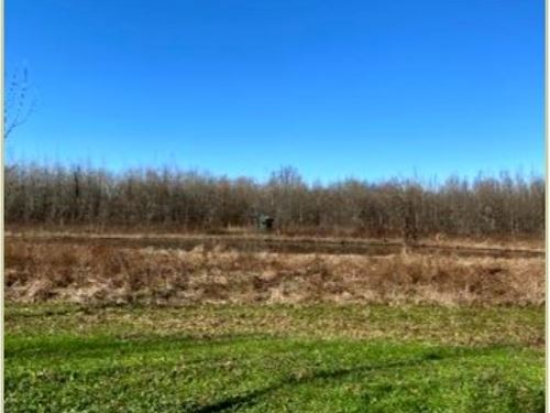 93 Acres In Bolivar County In Mound : Mound Bayou : Bolivar County : Mississippi
