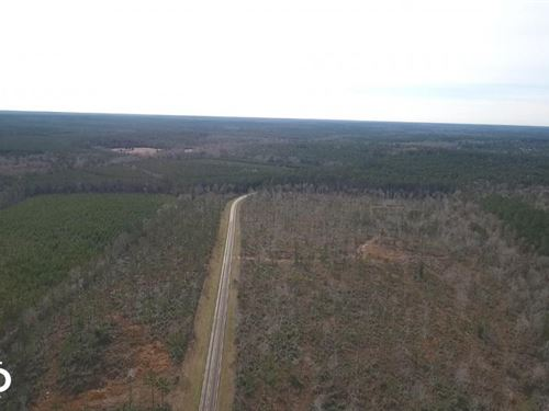 100 Acre Recreational Tract With Ho : Livingston : Polk County : Texas