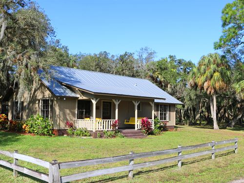 Lazy Y Cross Ranch : Arcadia : De Soto County : Florida