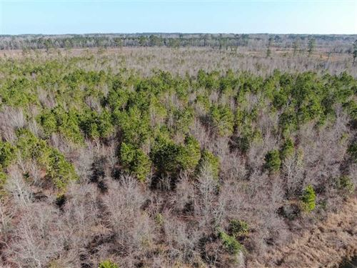 79 Acres of Development Land : Lumberton : Robeson County : North Carolina