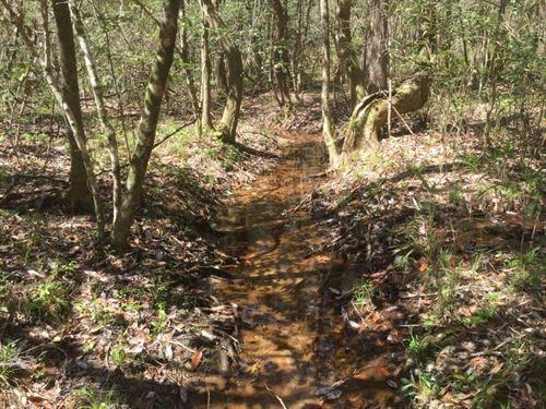Wooded Acreage on Hwy 231 : Brundidge : Coffee County : Alabama