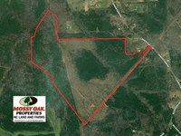 154 Acres of Hunting And Timber LA : Sanford : Lee County : North Carolina