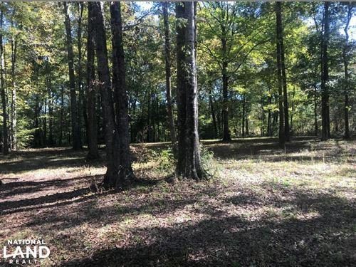Buttahatchee River Campsite And Rec : Hamilton : Lamar County : Alabama