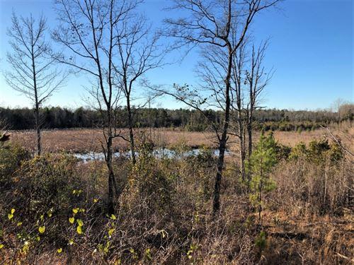 Gum Creek Hunting : Milledgeville : Baldwin County : Georgia
