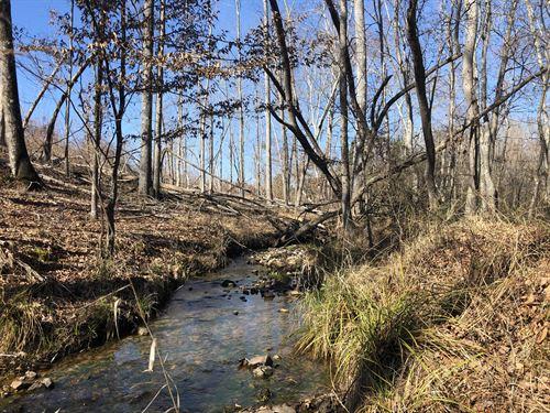 Hunting Close to Lake Oconee : Eatonton : Putnam County : Georgia