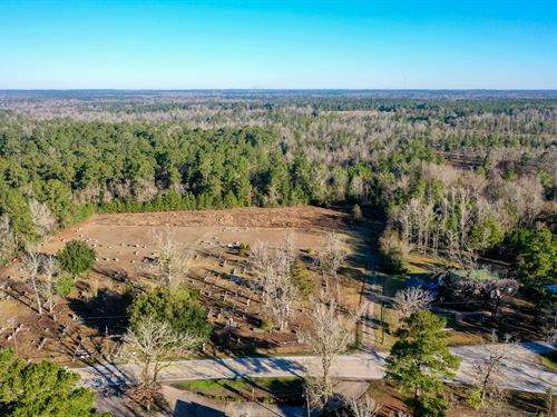 Beautiful 132 Acre Tract : Livingston : Polk County : Texas