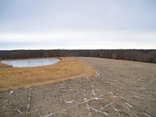 Livingston CO MO Hunting : Chillicothe : Livingston County : Missouri