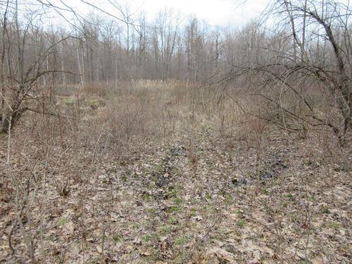 Ashtabula County Hunting Land : Conneaut : Ashtabula County : Ohio
