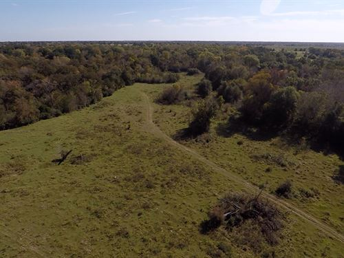 90+ Acres Hwy 21 North Zulch : Madisonville : Madison County : Texas