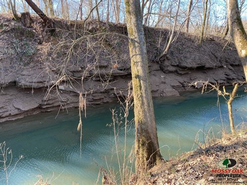 272 Acres River Front Property : Greensburg : Green County : Kentucky
