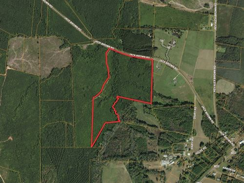 Versatile Tract Near Lake Gaston : Roanoke Rapids : Halifax County : North Carolina