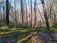 34 Ac Overlooking The James River : Big Island : Bedford County : Virginia