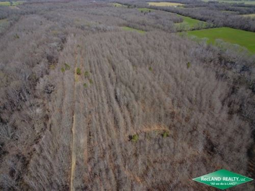 200 Ac, Crp Income & Hunting : Crowville : Franklin Parish : Louisiana