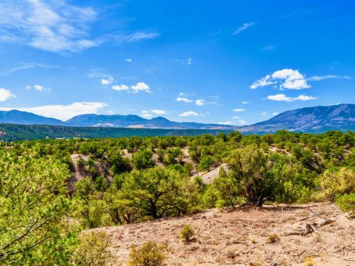 Road Frontage & Mountain Views : Gardner : Huerfano County : Colorado
