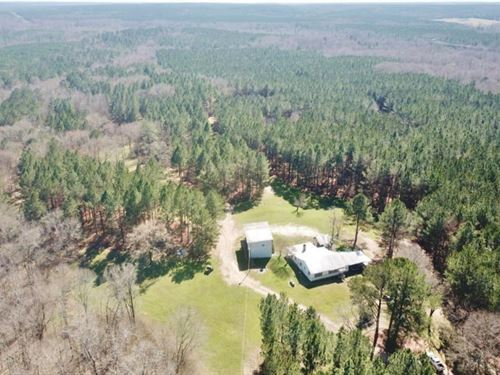 816 Acre Hunting Paradise, Camp : Union Church : Jefferson County : Mississippi