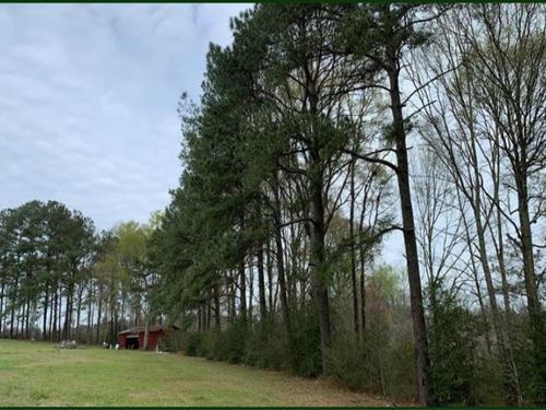 10 Acres In Tangipahoa Parish : Franklinton : Tangipahoa Parish : Louisiana