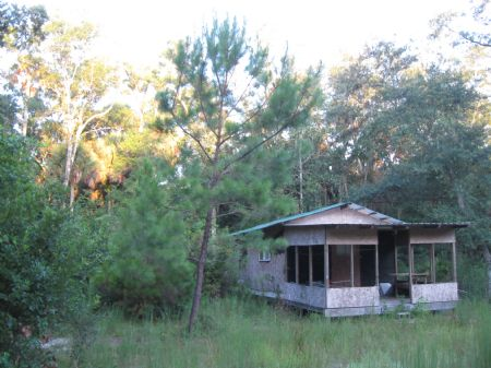 100 Acres With Hunting Camp in Dixie County, Florida