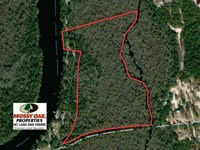 Reduced, 21 Acres of Residential : Rocky Point : Pender County : North Carolina