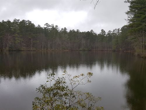 Great Timber Tract with Lake : Cataula : Harris County : Georgia
