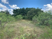 15 Acres with Exotics : Menard : Texas