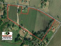 19 Acres of Farm Land For Sale : Saint Pauls : Robeson County : North Carolina