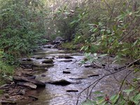 Little Kowaliga Creek : Eclectic : Elmore County : Alabama