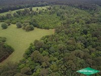204.9 Ac, Ranch Surrounded By Nat : Dry Prong : Grant Parish : Louisiana