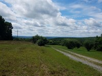Bluff Views, House, 30.6 Acres : Dunlap : Sequatchie County : Tennessee