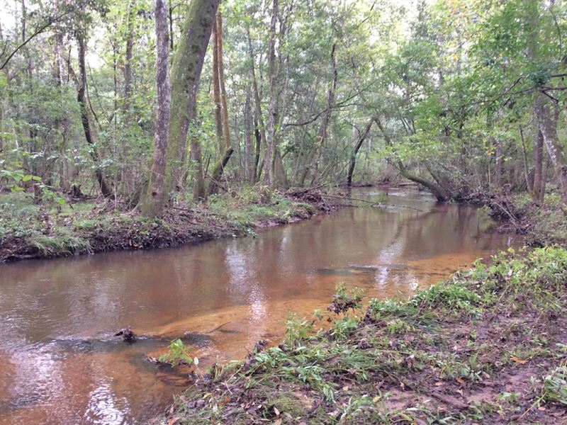 Weaver Place Rd Tract : Opp : Covington County : Alabama