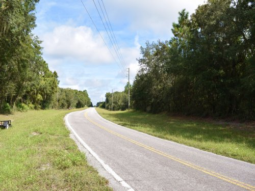 16.3 Ac Greenbelted, Fenced & Gated : Bushnell : Sumter County : Florida
