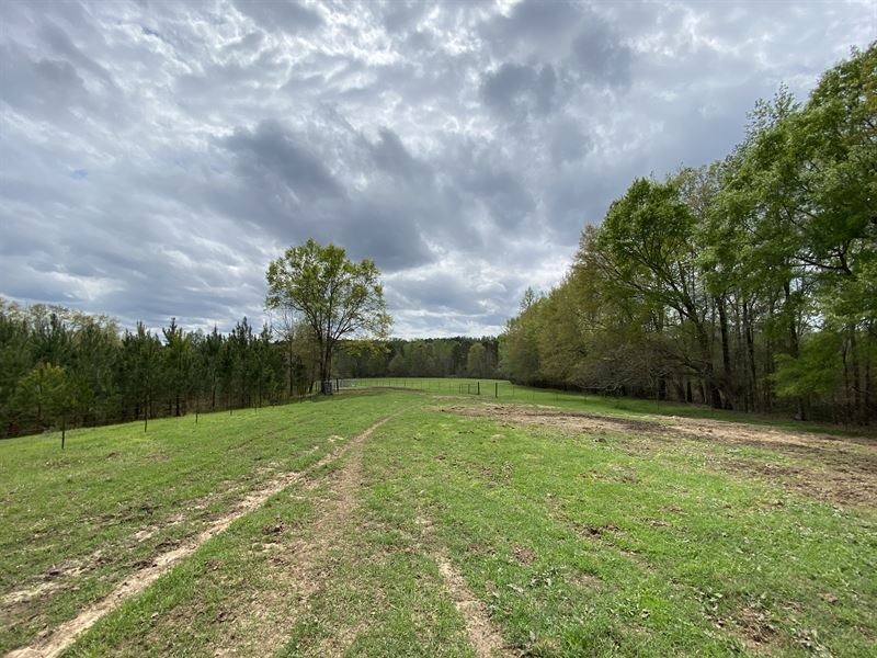 Pasture Land with Nice Brick Home : Hatchechubbee : Russell County : Alabama