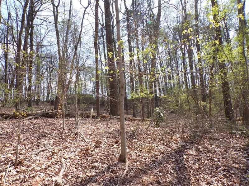 19.68 Acres in Morristown, TN : Morristown : Hamblen County : Tennessee