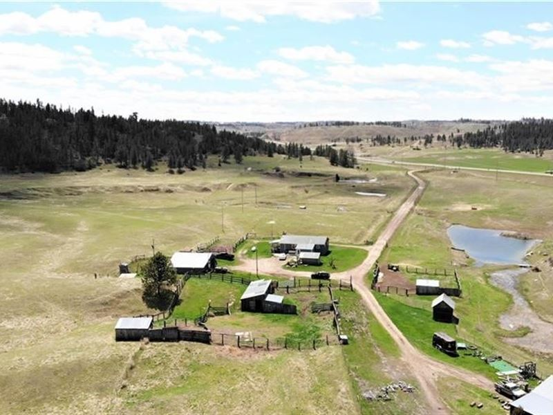 Farm in The Bull Mountains : Roundup : Musselshell County : Montana