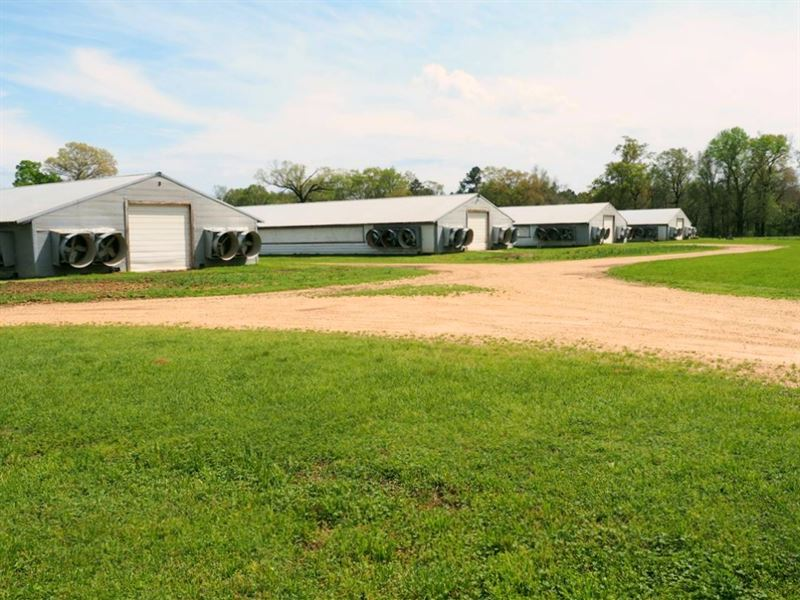 6 House Broiler Poultry Farm, 4 Bed : McComb : Pike County : Mississippi