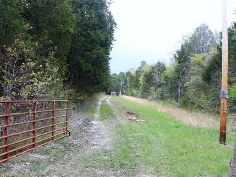 Wooded Acreage Road Access Total : Mountain View : Stone County : Arkansas