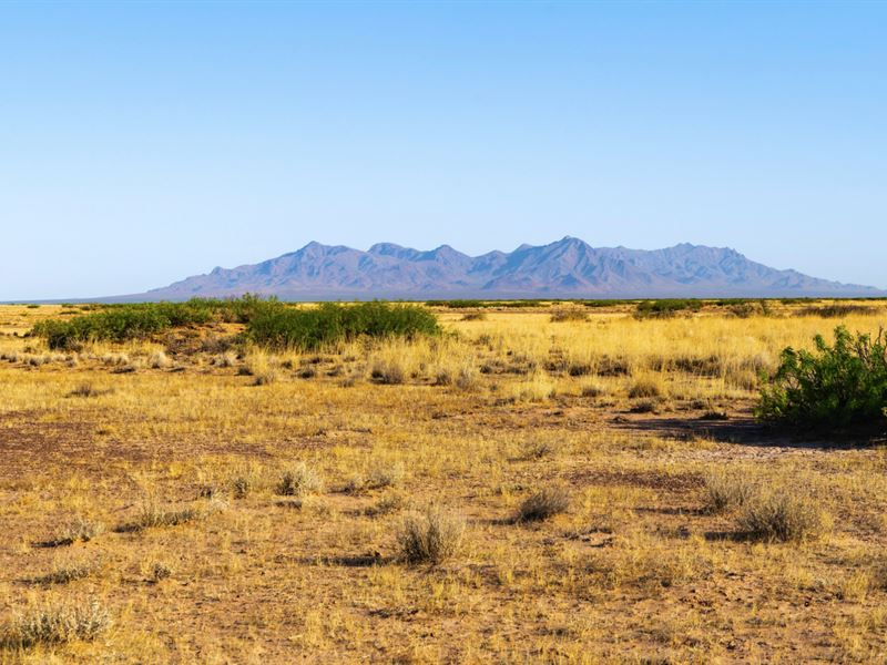 Ranch Bordering Public Land : Columbus : Luna County : New Mexico