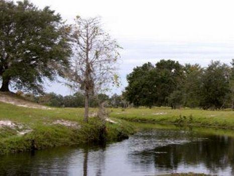 Lucky L Ranch : Kenansville : Osceola County : Florida