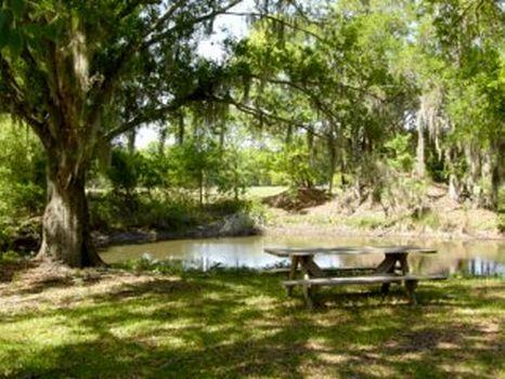 Rock Ridge Ranch And Home : Polk City : Polk County : Florida
