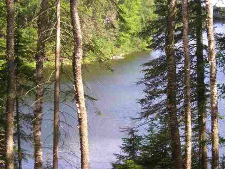 Lot 43c Fence Lake - Mls #1010447 : Michigamme : Baraga County : Michigan