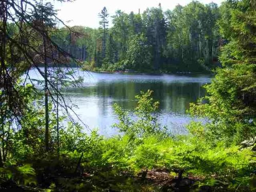 Lot 45A Fence Lake, Mls 1093429 : Michigamme : Baraga County : Michigan