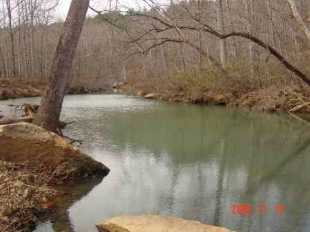 Raccoon Creek Hunting Property 360 : Mountain View : Stone County : Arkansas