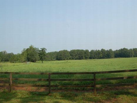 Mini Ranch : Pavo : Brooks County : Georgia