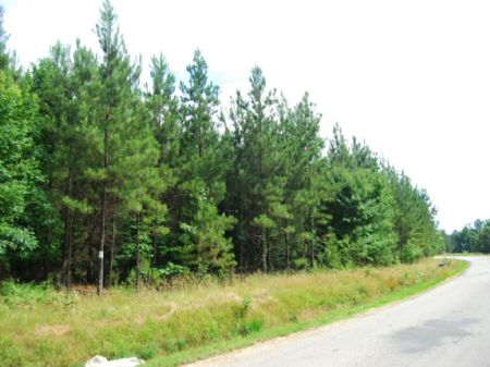 47.5 Ac Near Sumter National Forest : Union : South Carolina