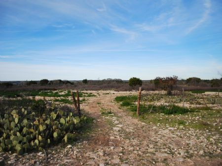 High Lonesome Ranch : Loma Alta : Val Verde County : Texas