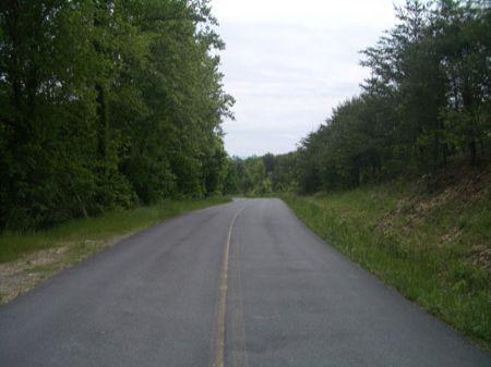 121 Ac Near Carters Lake - Ta4008a : Oakman : Gordon County : Georgia