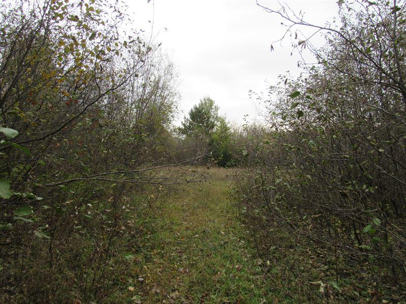 Dunham Rd 1113173 : Marenisco : Gogebic County : Michigan