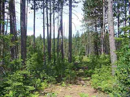 Tbd Off Pike Lake Rd Mls #1044416 : Tapiola : Houghton County : Michigan